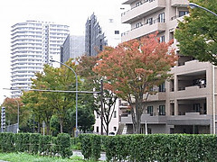 20131022_112353