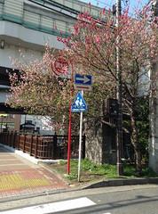 20140409_145057