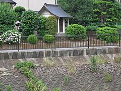 20140609_160921