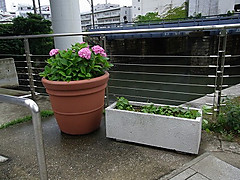 20140612_135215